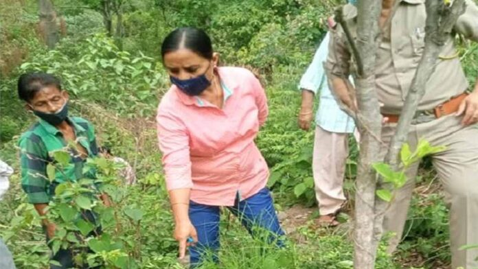 Himachal Pradesh Missing youth body found in forest